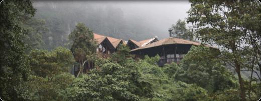 misty mountain retreat