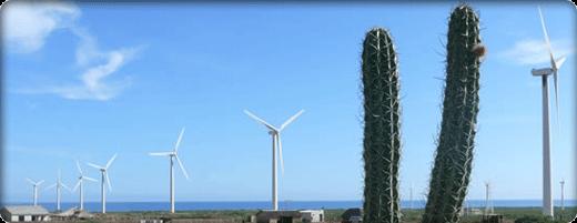 The Wayuu and the Wind