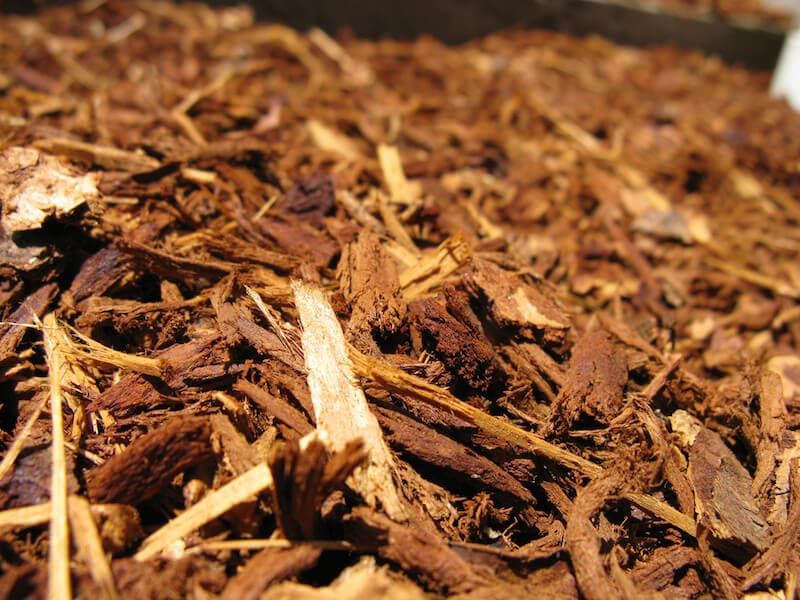Why Mulching is a Critical Part of Environmentally-Responsible Gardening