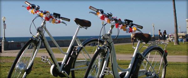 eneloop sanyo bikes