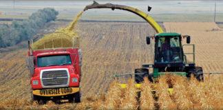 ethanol corn production
