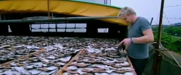 gordon ramsay shark fin soup