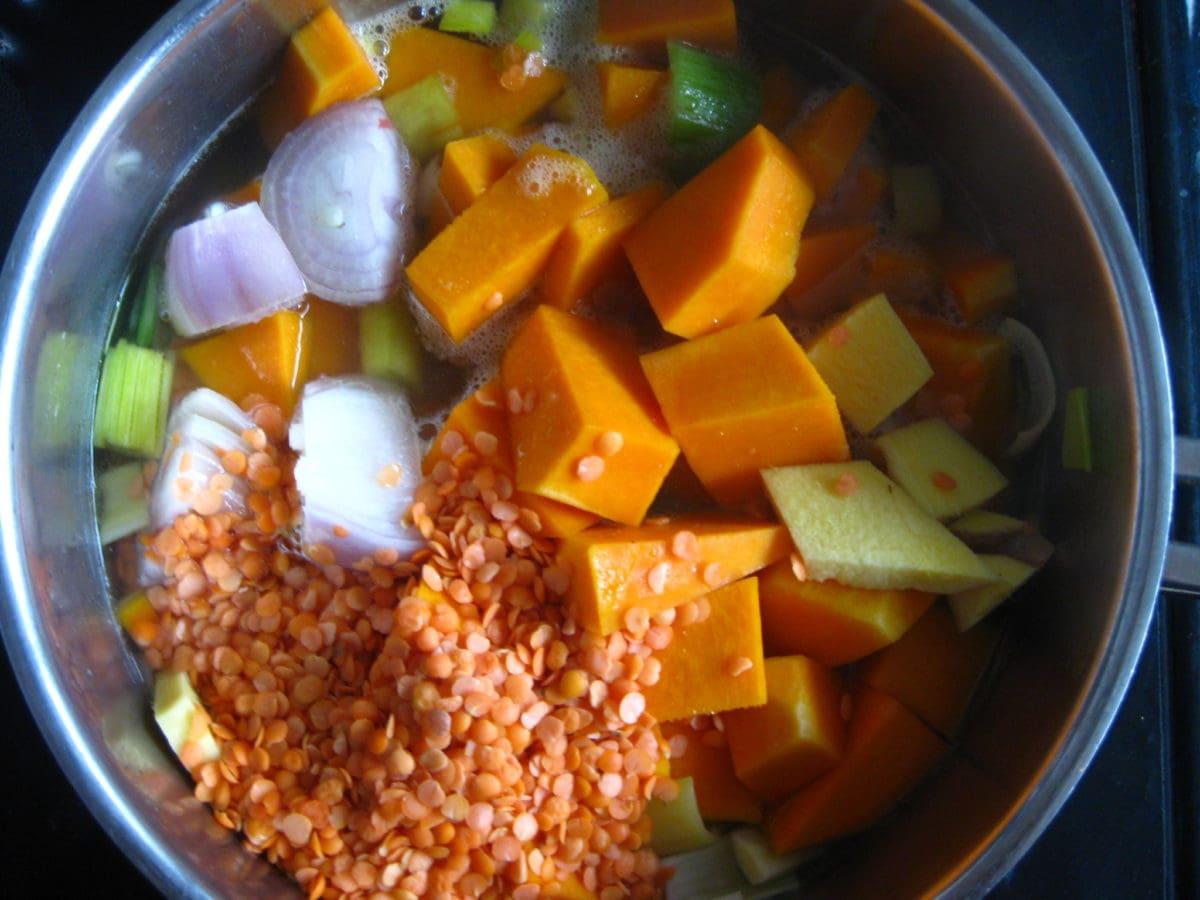 creamy squash coconut lentil soup ingredients