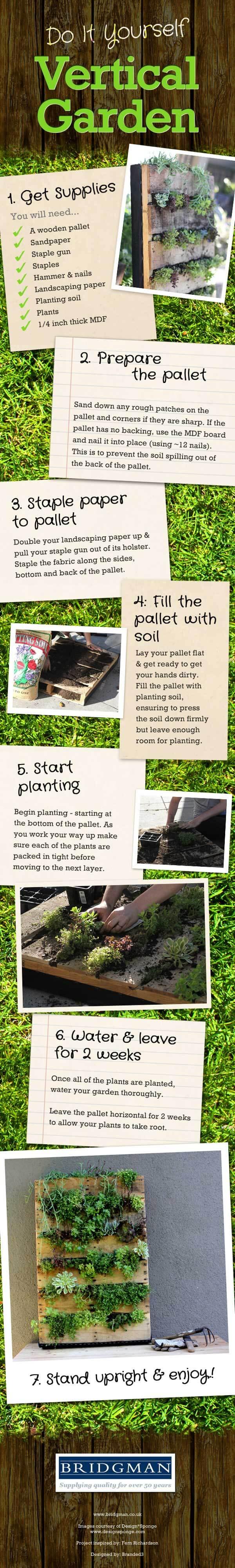DIY vertical garden wall infographic
