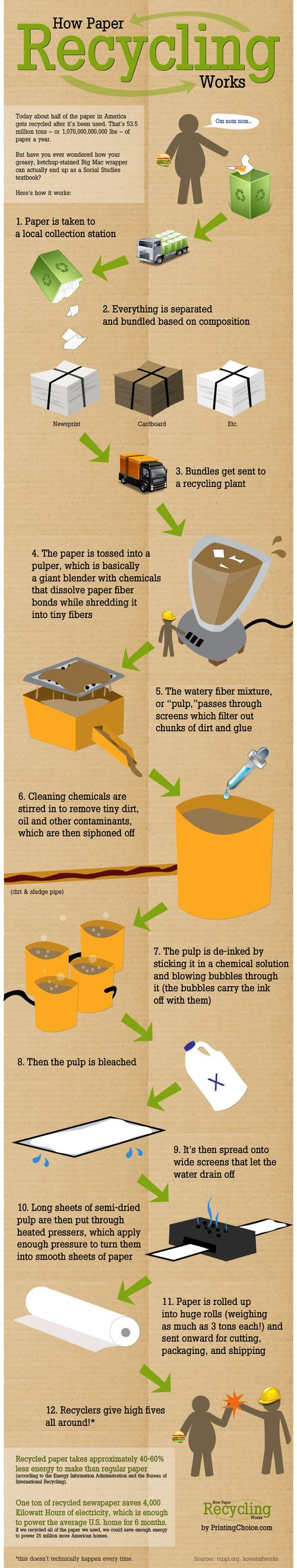 how paper is recycled infographic