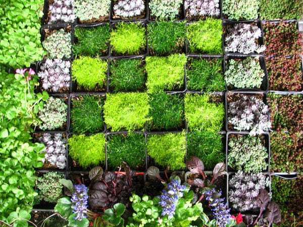 Diy Gardening How To Create A Vertical Wall Garden