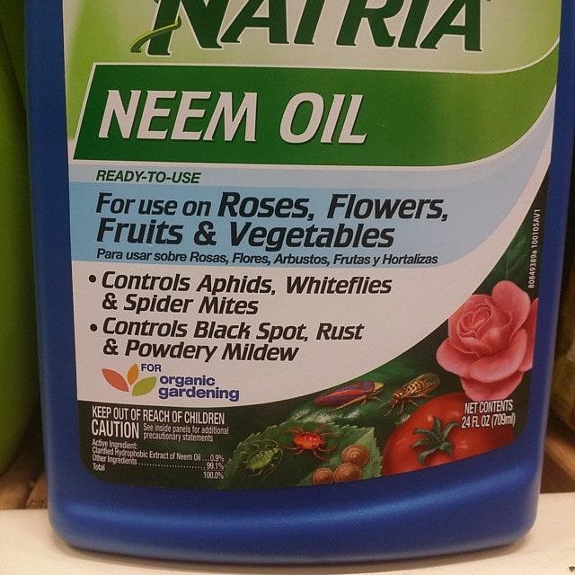 store bought neem oil
