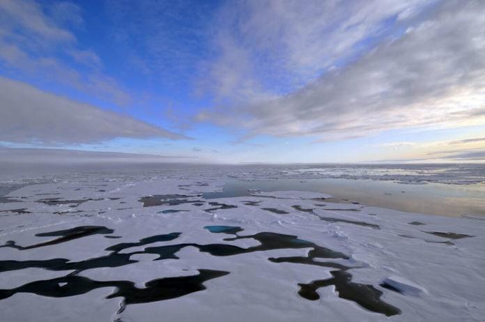 Arctic Sea Ice Thaw