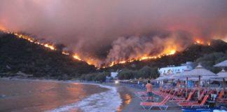 Global wildfire