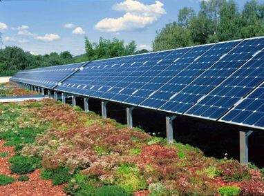 Green Roofs and Solar Panels: Higher Energy Efficiency