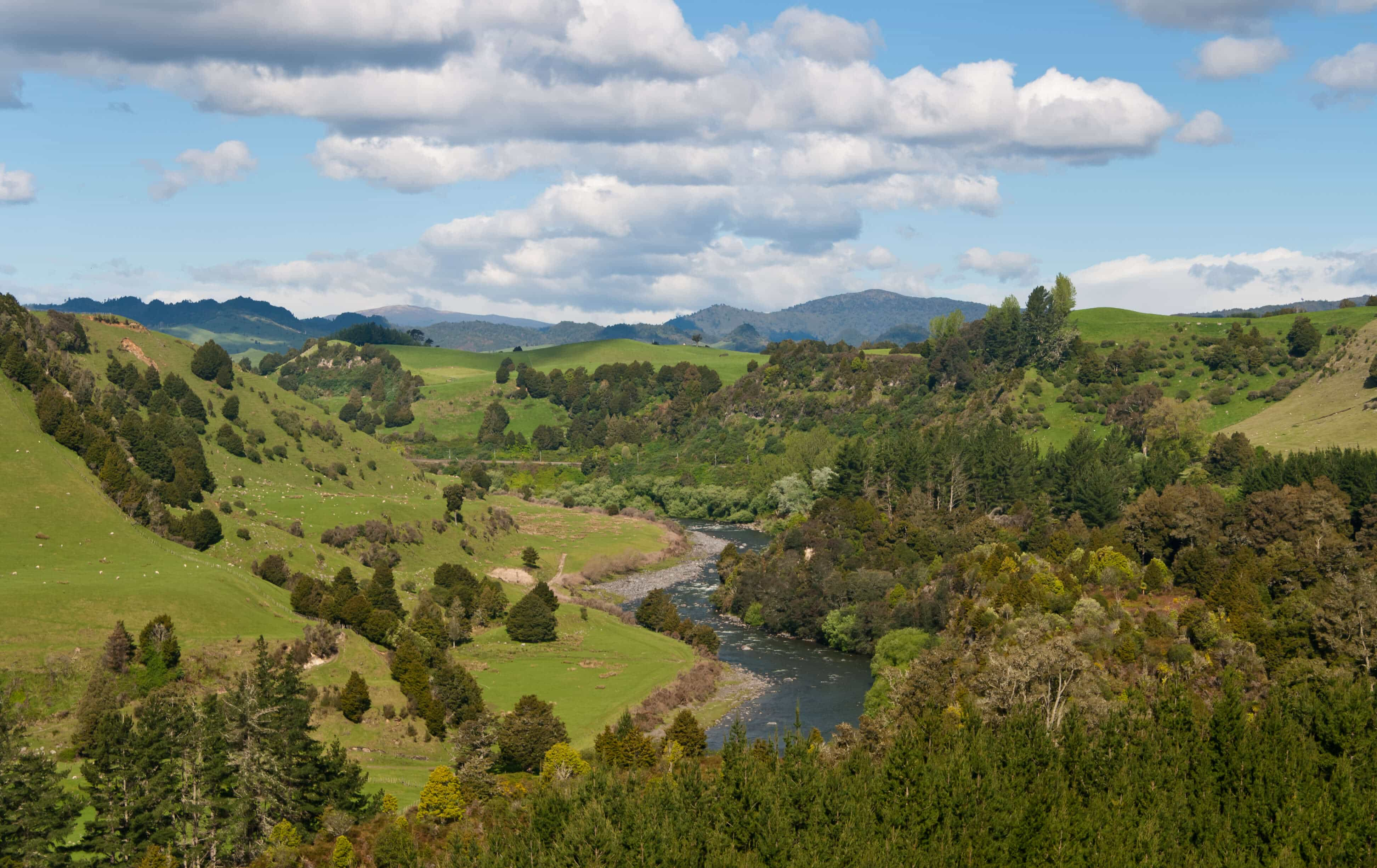 New Zealand's Whanganui River Receives Legal Voice