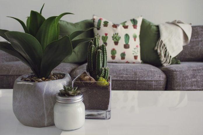 greenify living room