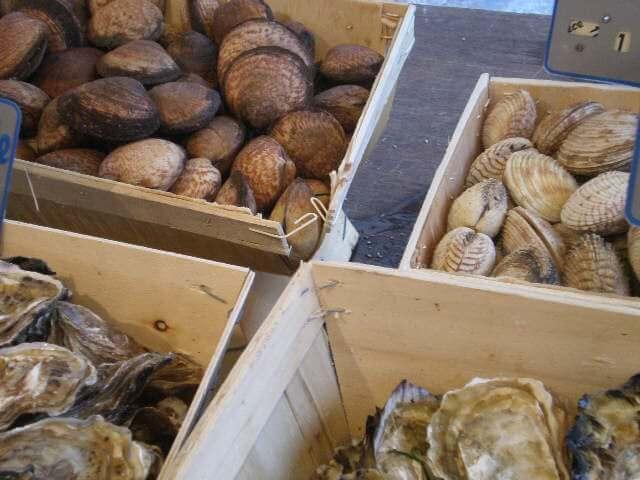 Environment Canada calls for shellfish closure