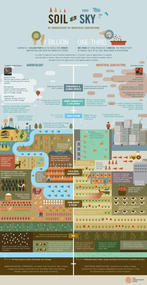 Soil to Sky infographic