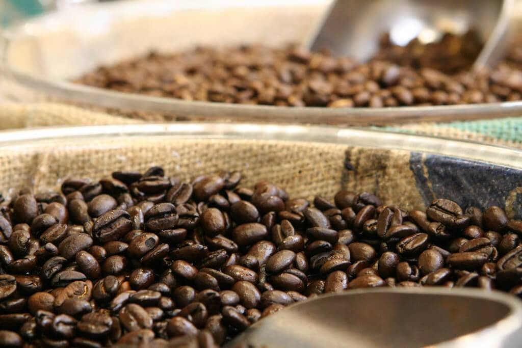 Wild arabica coffee could be extinct in 70 years, due to climate change