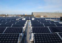 Bullfrog Power and SolarShare