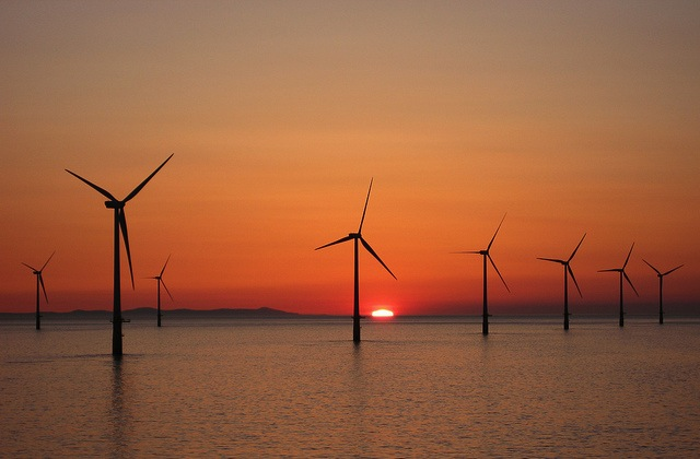 US Sells Sea Areas For Offshore Wind Farms
