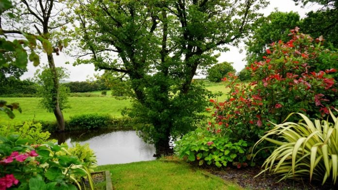 Landscaping Ideas For A Greener Home