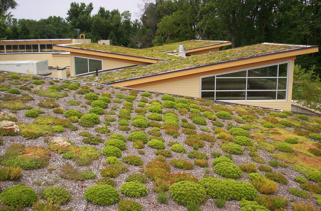 Simple Ways of Turning your Roof into a Model of Green Living