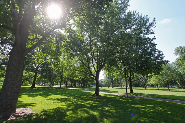 America's Top 6 Green Colleges and Environmental Science Programs