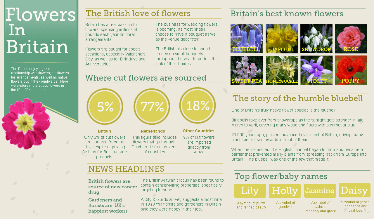 flowers in Britain infographic
