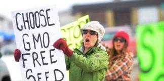 GMO free seed