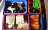 "School Day Tips: Packing a ""Green"" Lunch"