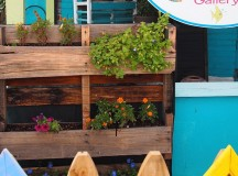 How To Assemble A Patio Garden Using Upcycled Materials