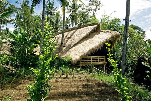 Green-School-Sibang-Kaja-Ubud-1
