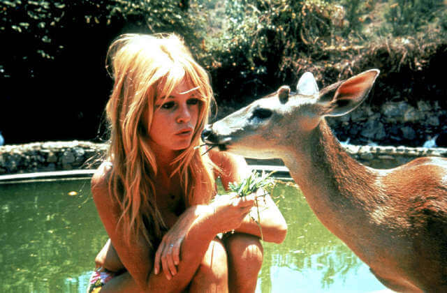 Brigitte Bardot Files Pictures