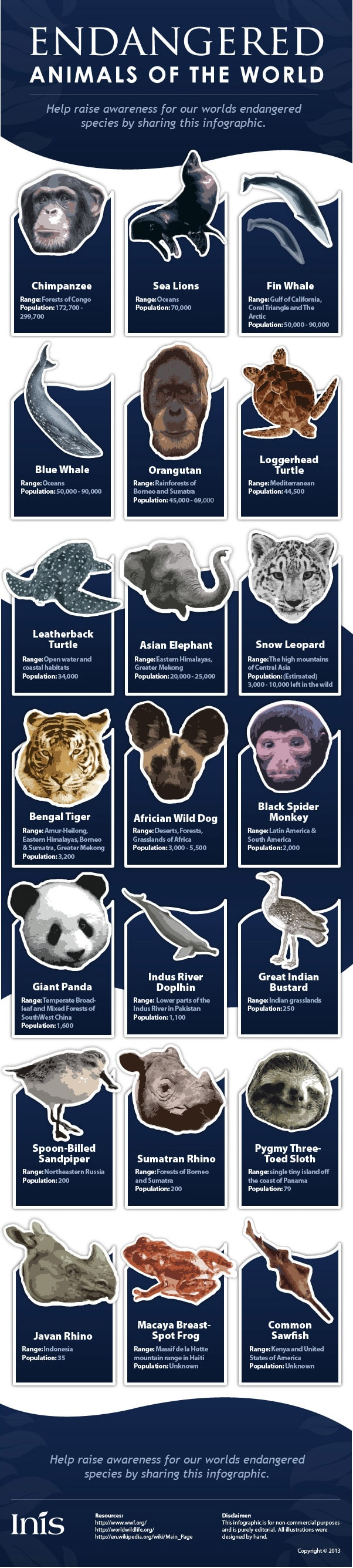 Endangered animals infographic