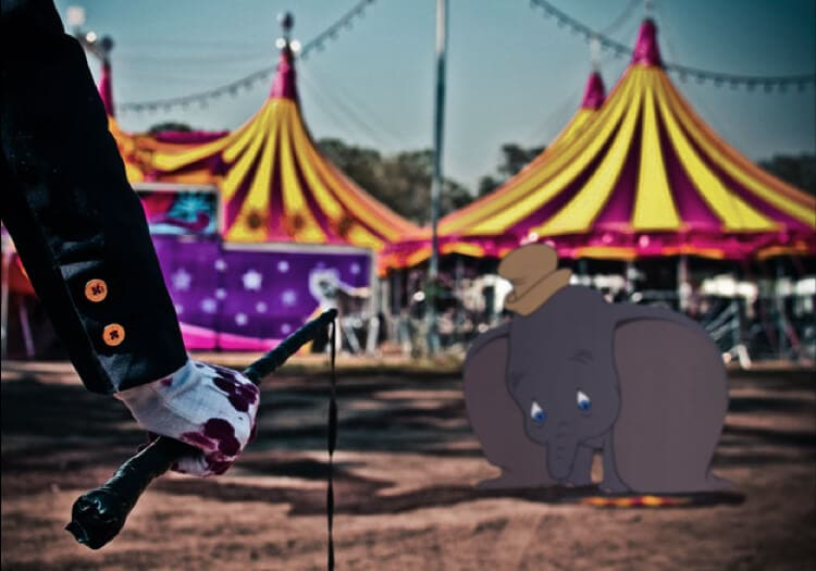 dumbo abused in circus