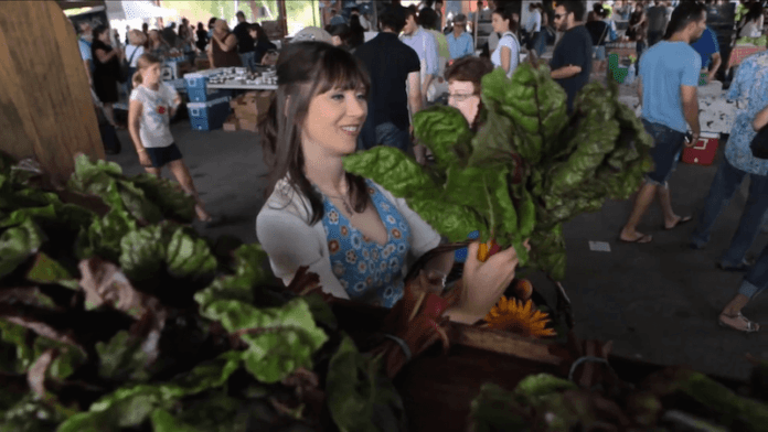 julie daniluk slimming meals that heal