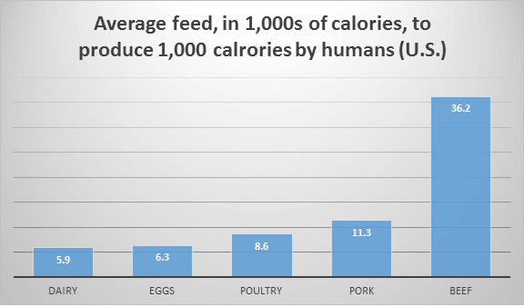 average feed in 1,000s of calories to produce 1,000 calories by humans