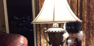 LED light bulb in lamp