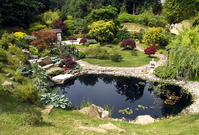 serene-ecofriendly-garden