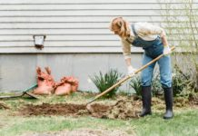 composting - the ultimate guide