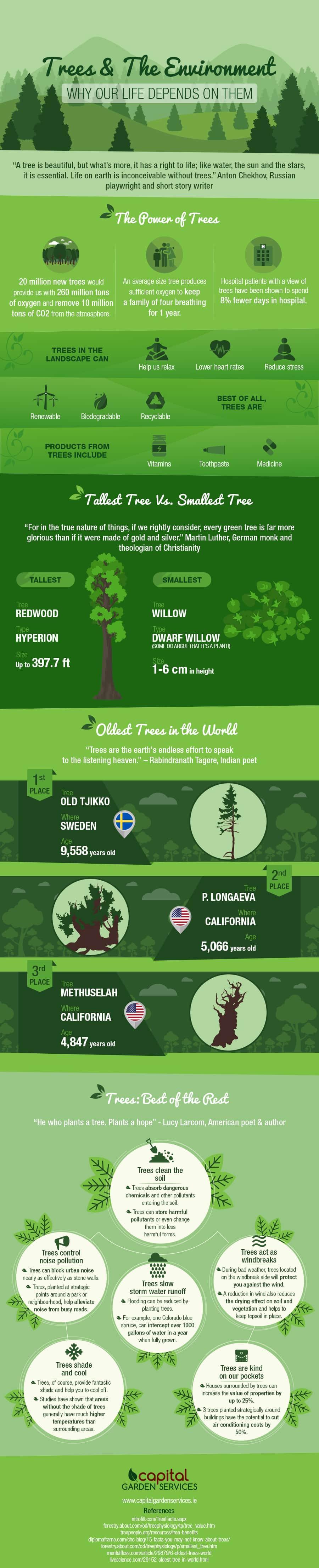 trees environment infographic