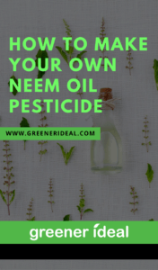 how to make your own neem oil pesticide