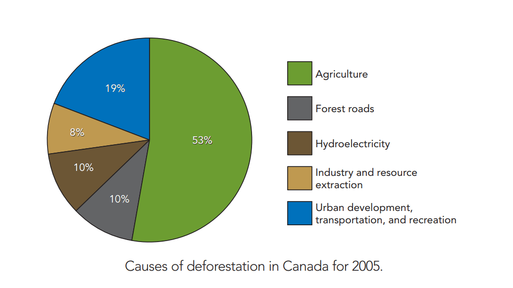 causes-of-deforestation-canada
