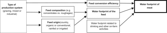 water-footprint-meat-system
