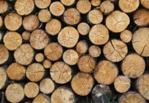 cross-laminated-timbers-demand-to-grow-by-15