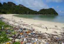 darwins-paradise-hit-by-plastic-waste