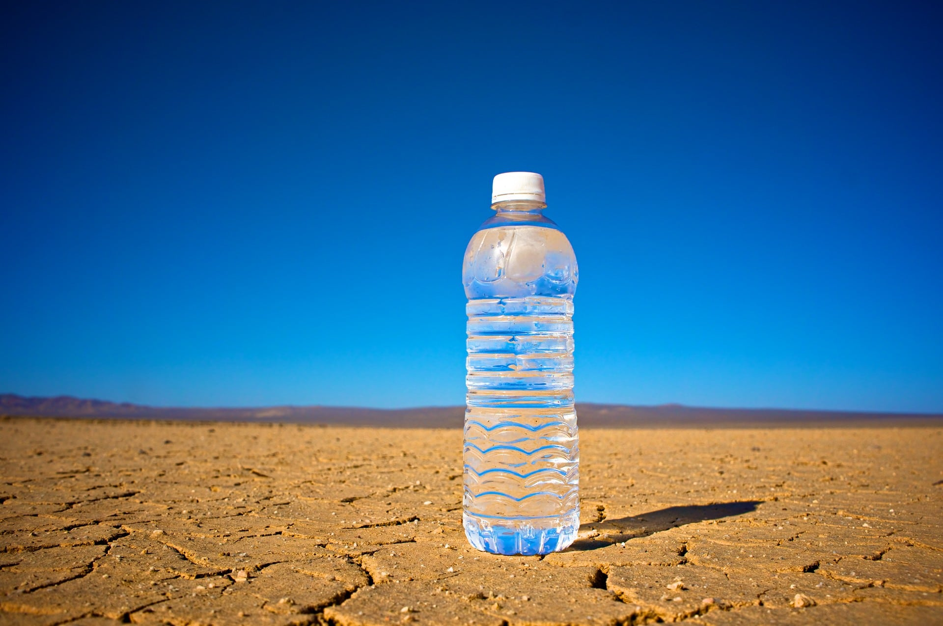 Fresh Water Harvested from Desert Air   Greener Ideal