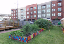 five-urban-gardening-basics