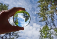 transparent sphere with the reflection of nature surrounding it.