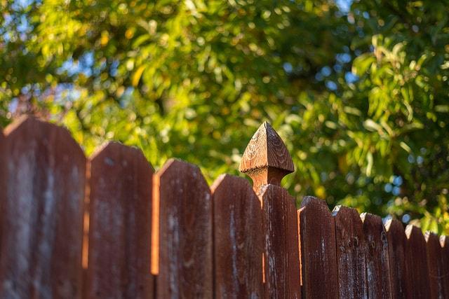 fencing-crops