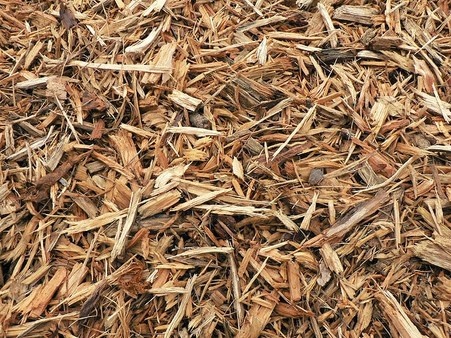 mulch-covering-crops