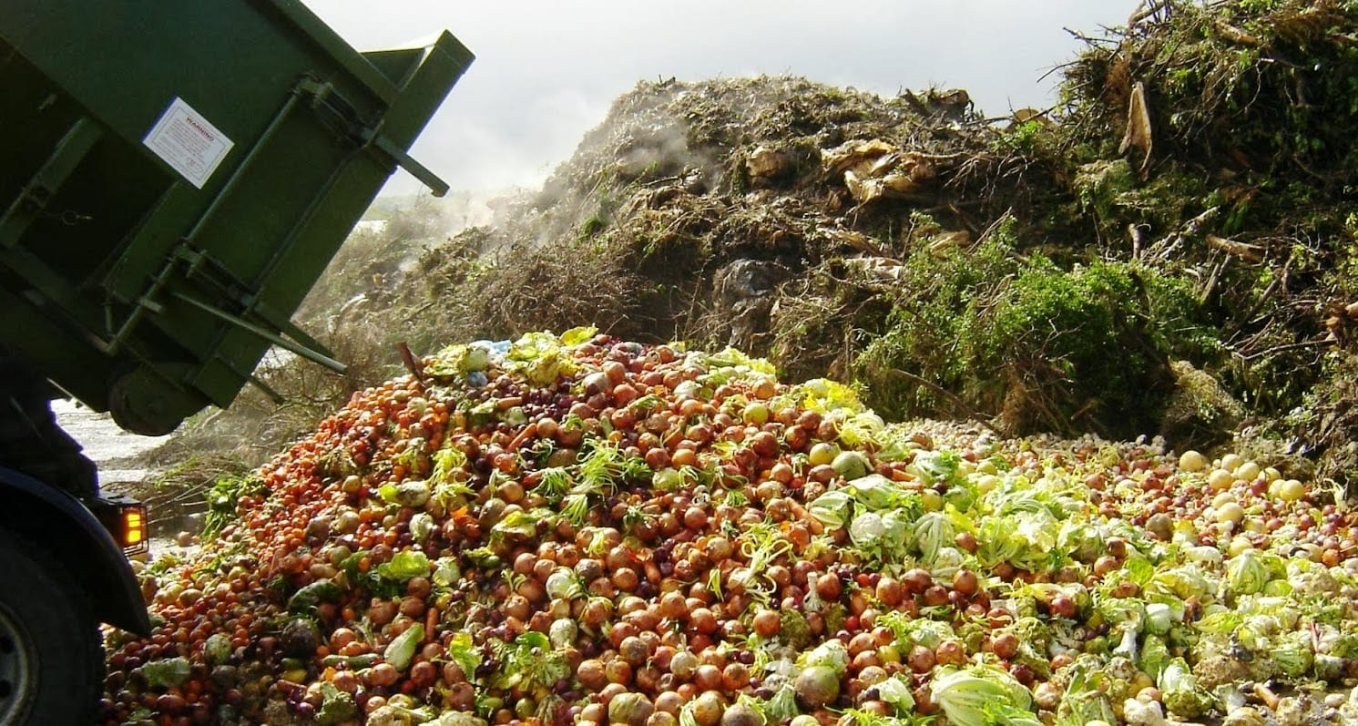 9 Food Waste Solutions That Ultimately Saves Our Planet