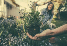 eco-friendly habits - gardening